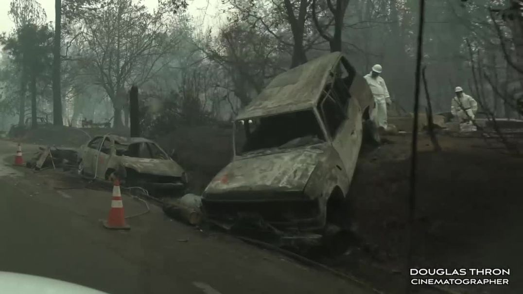 Paradise California Camp Fire Cat Rescue 2018 by Shannon Jay  Douglas Thron.mp4