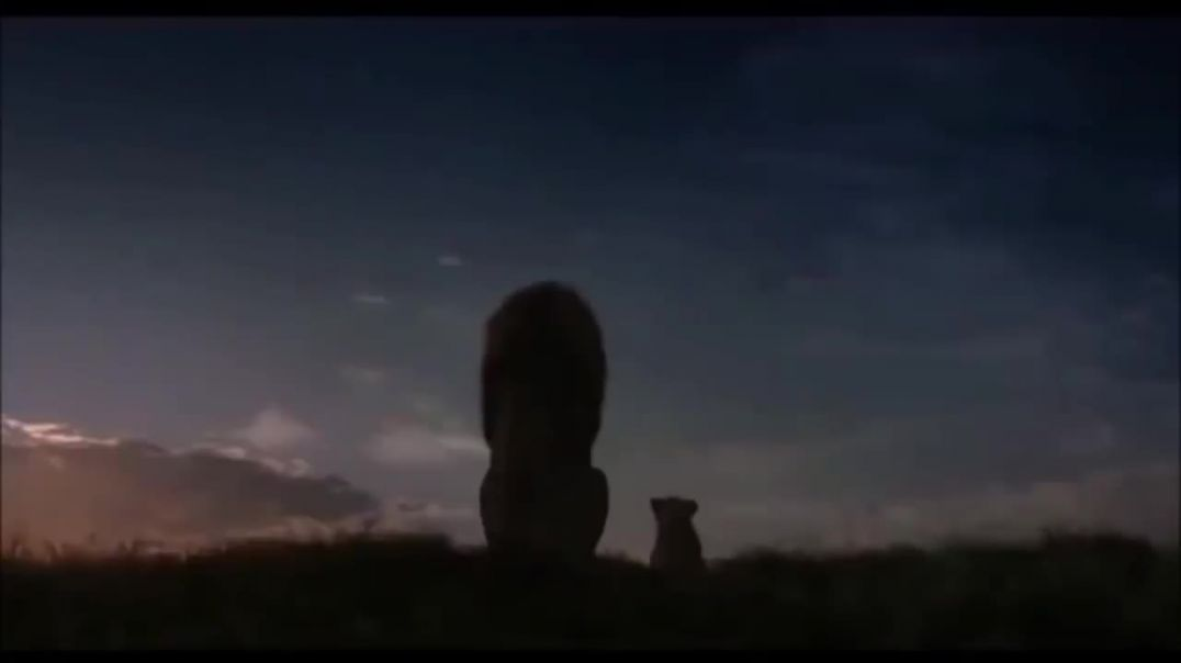 THE LION KING stikla
